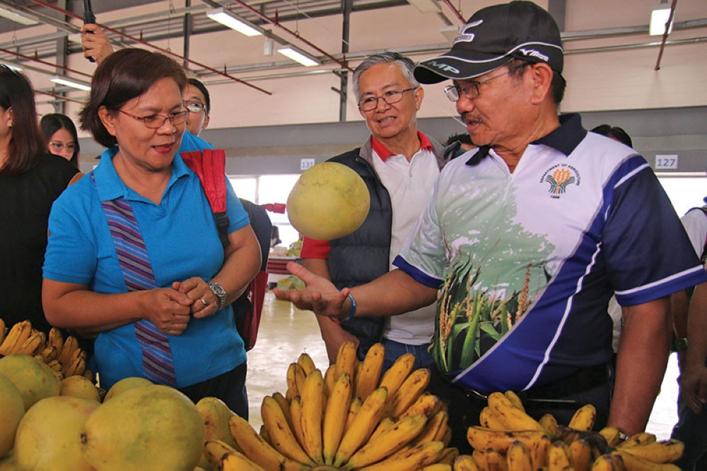 BAGUIO. Department of Agriculture Secretary Emmanuel Piñol checks out a pomelo from Davao, known as the fruit basket of the Philippines during TienDA and farmers forum held at the Benguet Agri- Pinoy Trading Center in La Trinidad. (Milo Brioso)