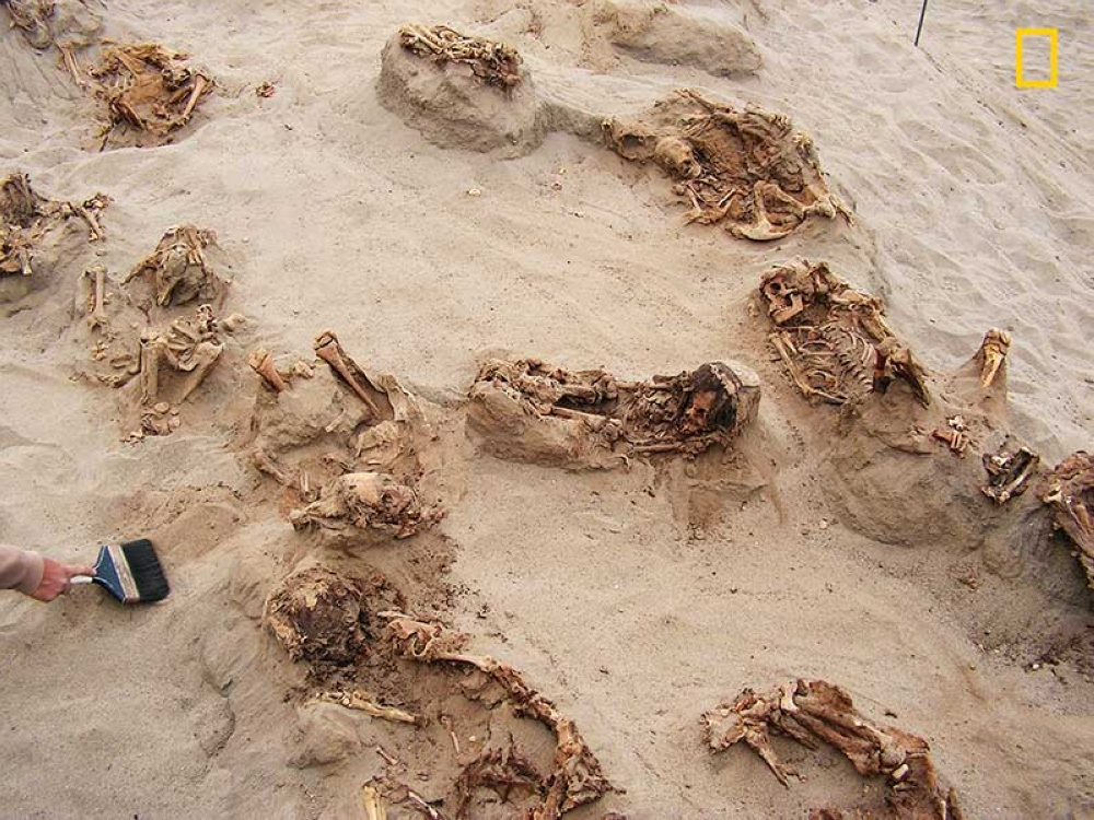 PERU. This April 22, 2011 handout photo provided by National Geographic shows more than a dozen bodies preserved in dry sand for more than 500 years, at the Huanchaquito-Las Llamas site near Trujillo, Peru. (AP)