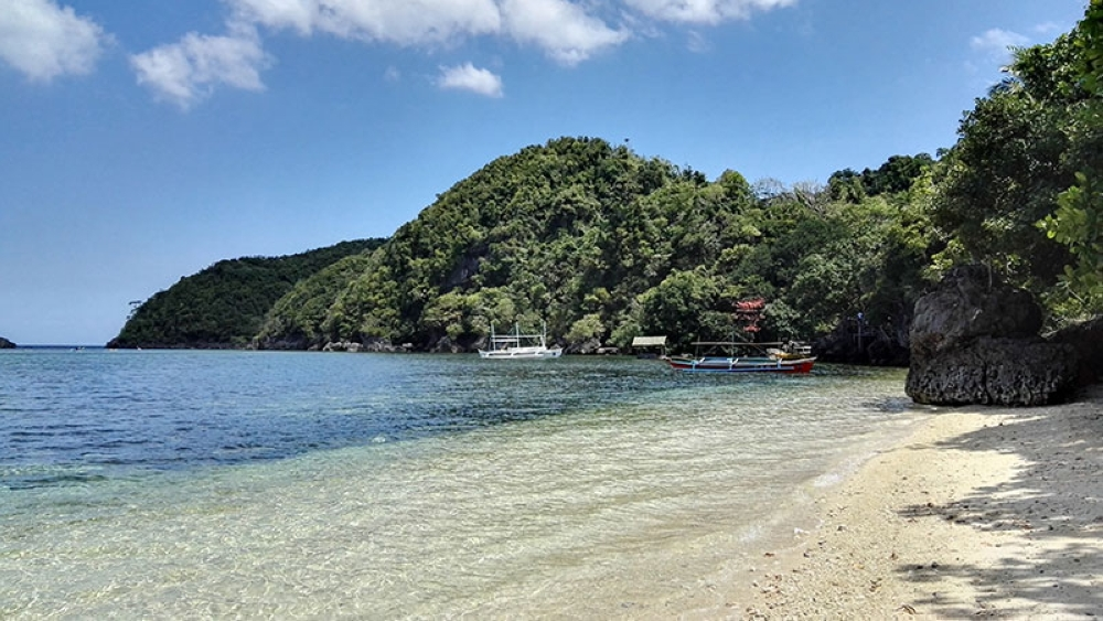 NEGROS. The pristine beach and lush forests of Danjugan Island. (Claire Marie Algarme)