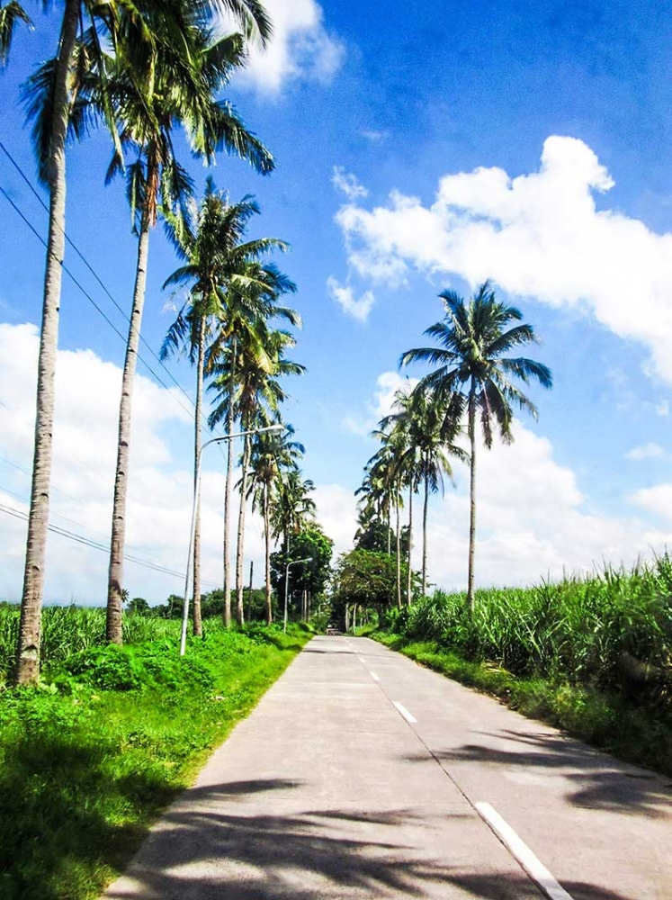 The road to St. Mary's Home for the Aged in Alangilan