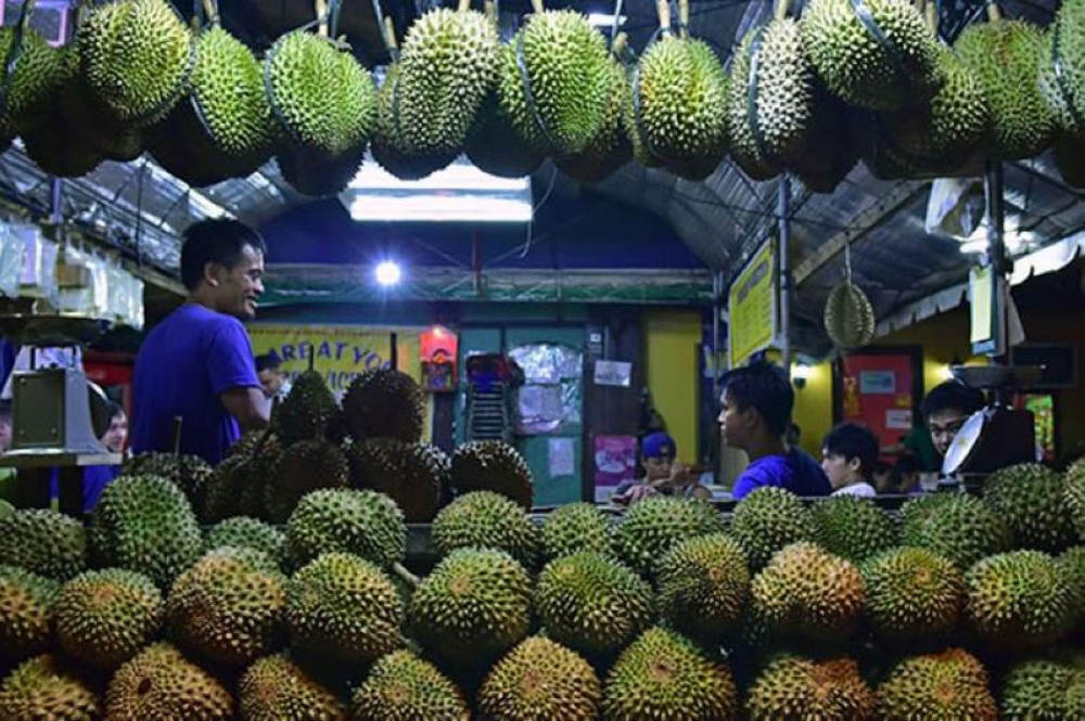 DAVAO. Officials expect a better durian harvest this year. (Mark Perandos)