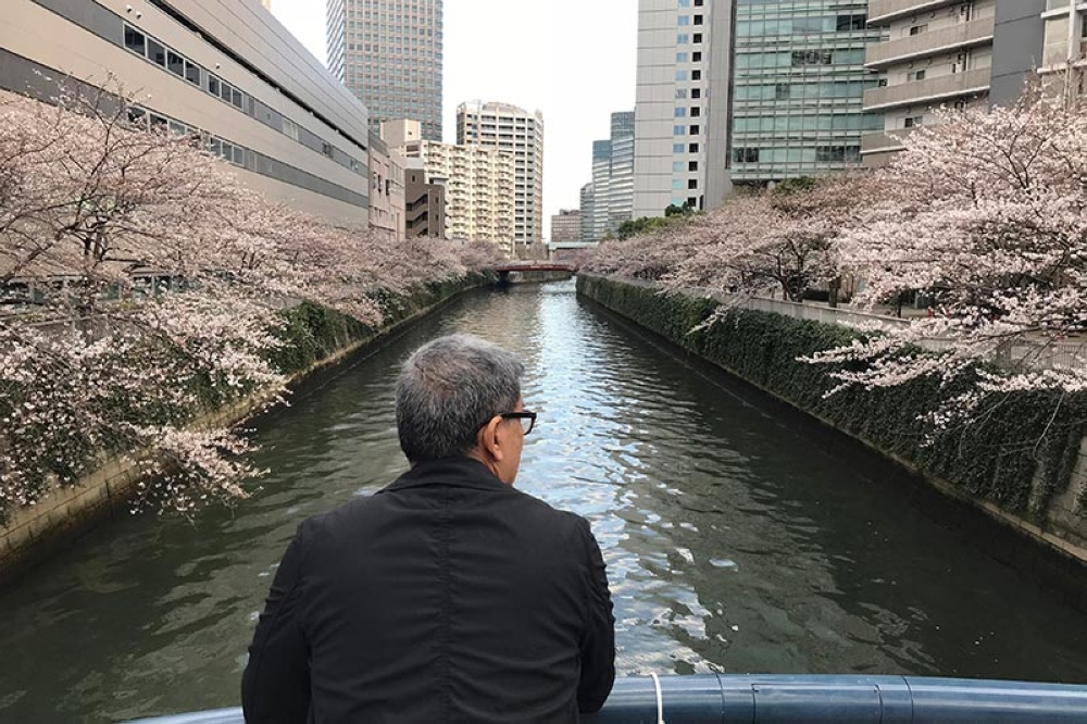 First day in Tokyo showed me this. By the Meguro River in Shinagawa. (Contributed photo)
