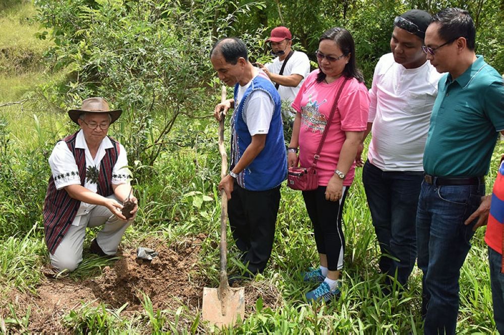 TENDING. Benguet Governor Crescencio Pacalso and Ifugao Gov. Pedro Mayam-o leads the tree planting and tending activity in Lamut, Ifugao during the Cordillera Unity Gong Relay as part of the 31st Cordillera Day celebration during the weekend. (Redjie Melvic Cawis)