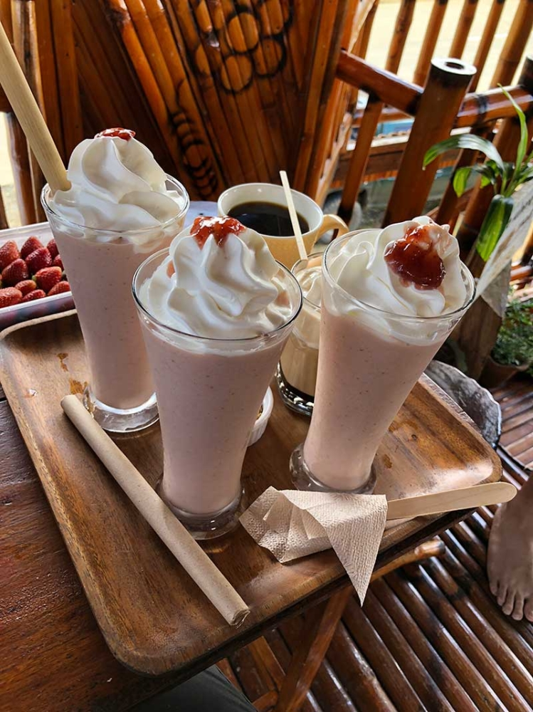 BUKIDNON. Their best-selling shakes from their own harvest. Note the bamboo straws. (Hannah Victoria Wabe)