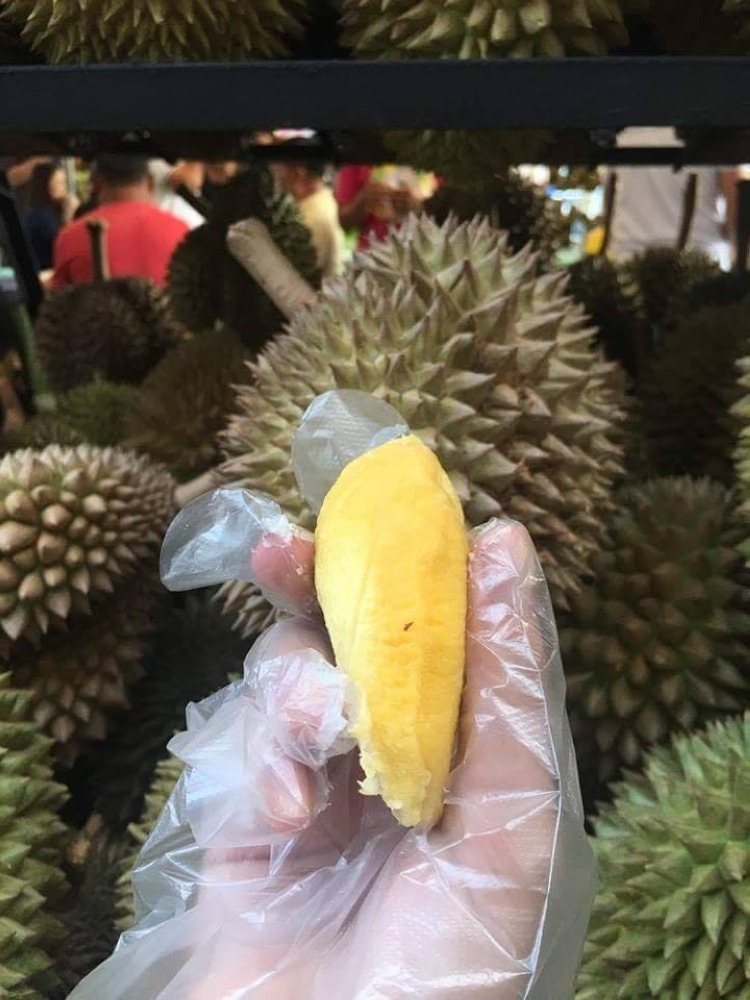 12x-durian - DAVAO. While disliked by many for its smell, the durian is loved for its milky, sweet, and tangy taste. (Gilford Doquila)