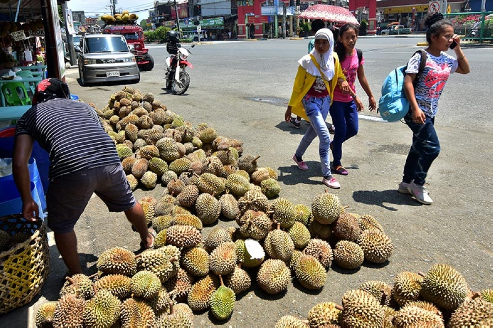 DAVAO. Despite a drop in the prices of durian in the southern parts of Davao City, the fruit remains highly priced at P60 to P80 per kilogram in the downtown areas. (Macky Lim)