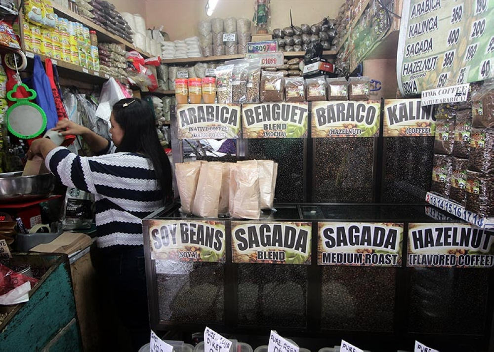 HIGH DEMAND. La Trinidad is set to boost its coffee production and entice local farmers to grow coffee since its elevation is suited for Arabica varieties. (Jean Cortes)