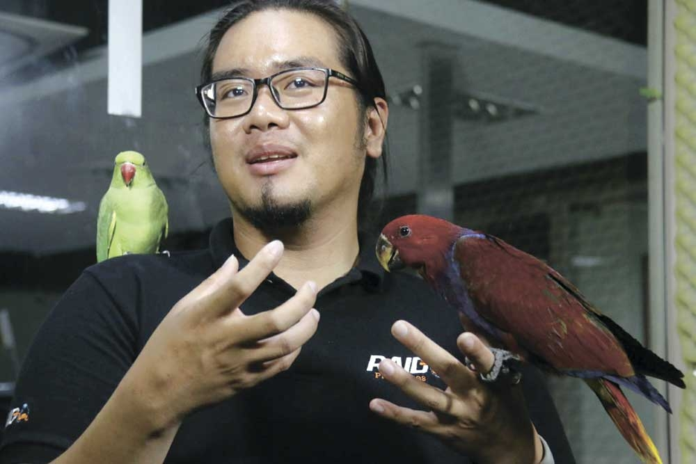 WINGED FRIENDS. John Mendoza keeps 22 birds of five different species as pets. He advises fellow bird lovers to buy birds only from shops accredited by the Department of Environment and Natural Resources. (SunStar foto / Alex Badayos)