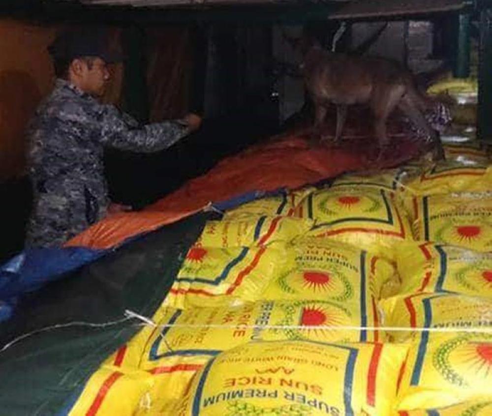 ZAMBOANGA. A K9 unit of the Zamboanga Coastguard Station inspect the rice they intercepted on Saturday off Basilan province. (Bong Garcia)