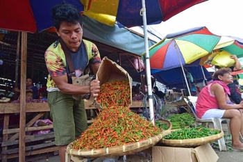 DAVAO. A vendor puts a newly opened box full of chili pepper on display at his makeshift stall at the Bankerohan Public Market in Davao City Monday morning, September 17. The price of chili ranges from P100 to P250 per kilogram. (Photo by Macky Lim)