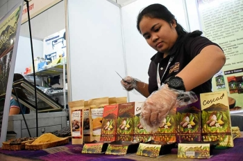 DAVAO. An exhibitor displays her chopped chocolate products for guests and visitors to taste at the 20th Davao Agri Trade Expo at SMX Convention Center, SM Lanang Premier, Davao City, on Thursday, September 20. (Mark Perandos)