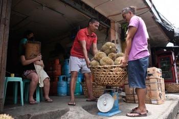 DAVAO. Nagtinabangay kining duha ka mga lalaki nga maalsa ang bukag aron timbangon ang duryan didto sa Bankerohan Public Market, Davao City, kagahapon, Septyembre 23. Ang presyo sa duryan naa gihapon sa tag P30 ang kilo. (Mark Perandos)