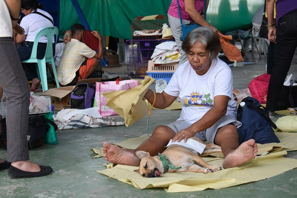 DAVAO. A dog owner fans her dog after it availed of the free spay and neuter services Thursday, September 27, at Camp Domingo E. Leonor along San Pedro Street, Davao City. The free spay and neuter services started Thursday and ended Friday. (Photo by Mark Perandos)