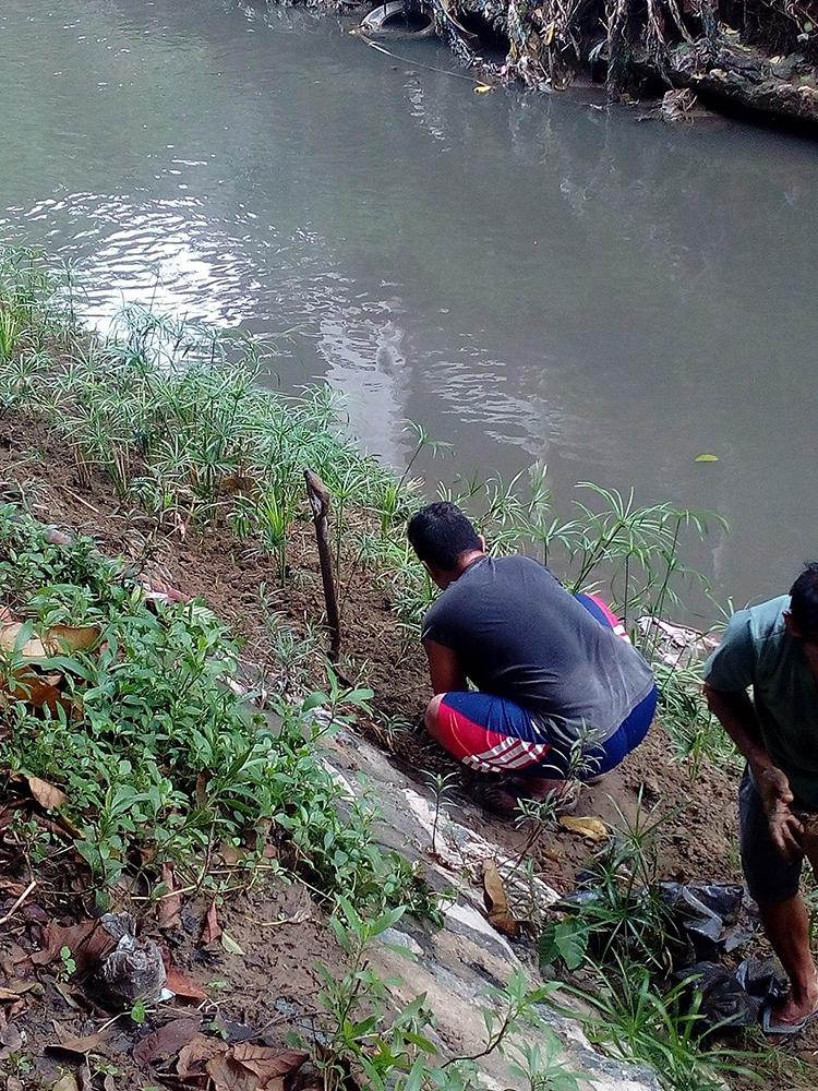 Butuanon river study