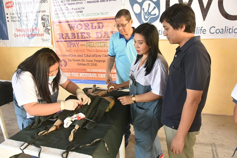 PAMPANGA. A veterinarian conducts Ovariohysterectomy on a pet dog as Provincial Veterinarian Dr. Augusto Baluyut Jr., Angeles City Foundation Assistant Director Center for Research Reynaldo Bundalian and IWCT Executive Director Suzanne Llanera look on. (Contributed photo)