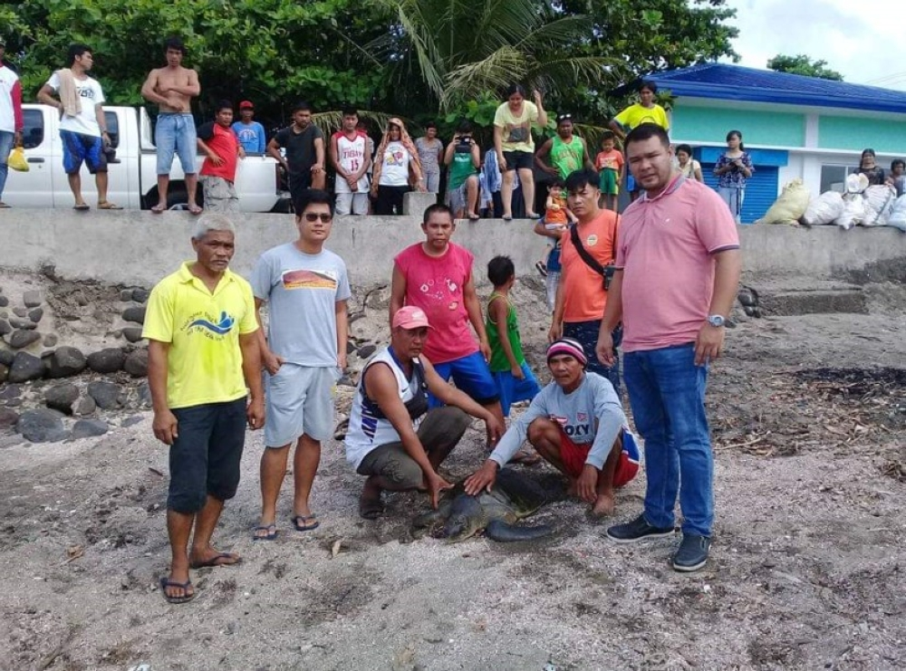VALLADOLID. Officials and residents of Barangay Poblacion in Valladolid town along with personnel of the DENR helped in releasing an Olive Ridley sea turtle which was found trapped in a fishnet near the shoreline on Sunday. (Photo courtesy of Mark Cabrillos)