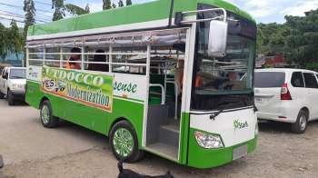 Modelong E-Jeepney. Usa ka jeepney nga gihimong isip pasaheroan sa dakbayan sa Lapu-Lapu. (FVQ)