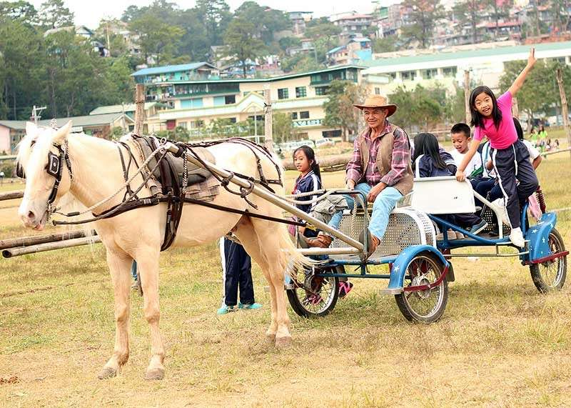 BENGUET. Elementary students enjoy a horse ride during their lunch break in Wangal, La Trinidad. The association of horse riders in La Trinidad, dubbed Valley Riders, offer cheaper horse riding experience as part of the month long Adivay Festival. (Photo by Jean Nicole Cortes)