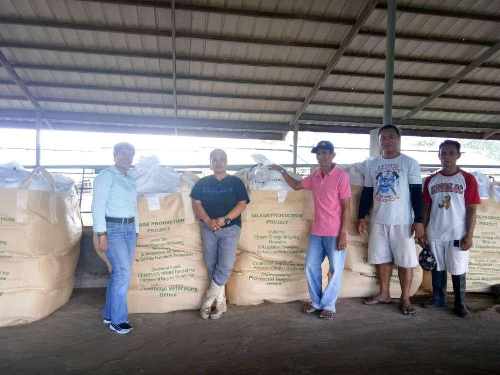 From left: PVO Farm Management Division head Dr. Placeda Lemana with NFR farm manager Regen Besa, Agriculturist II Jesus Villanueva and two farm personnel at the silage production area of NFR in Barangay Sta. Rosa in Murcia. (Contributed Photo)