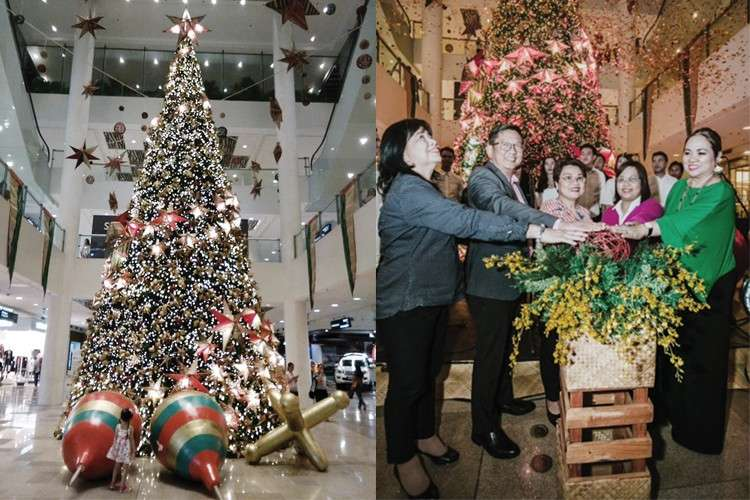 Ayala Center's Christmas Tree. Lighting up the tree are from left, Rustan's Lorna Alvarez and Pepet Macachor, Ayala Center Cebu general Bong Dy, Mutya Desamito of Toys R'Us and Pinky Chang of Pink Flora.