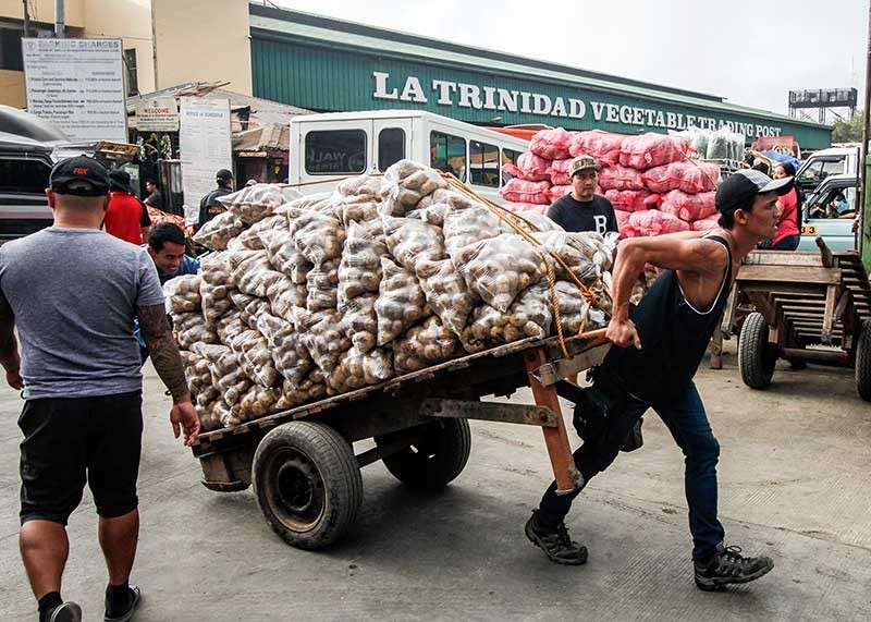 BAGUIO. Porters transport potatoes to delivery trucks at the La Trinidad Vegetable Trading Post. Prices of produce significantly increased due to high demand this holiday season. (Photo by Jean Nicole Cortes)