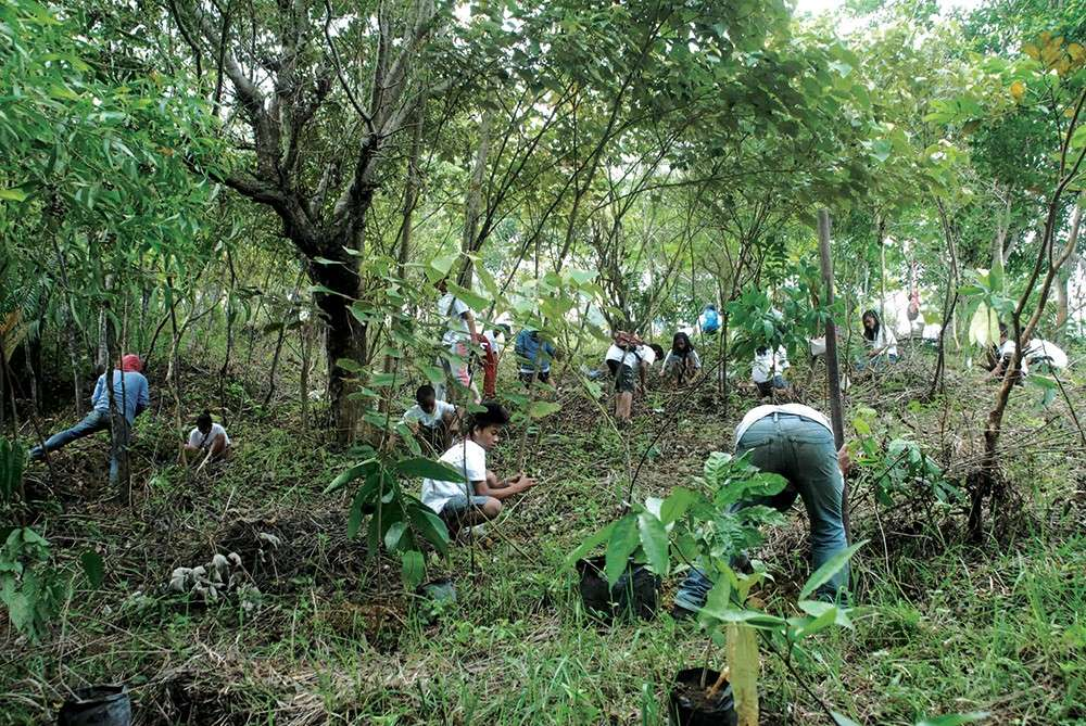 FOR MOTHER EARTH. Government employees and their friends plant tree seedlings to show they care for their environment. (Contributed foto)