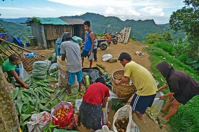 SIGNAL. With internet access, farmers can now grow their income by selling directly to customers or posting their products online making them better in this tech-driven business landscape. (SunStar file)