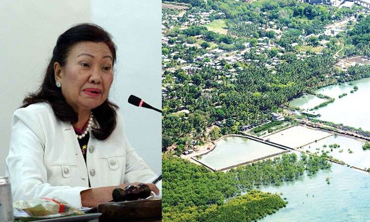 CEBU. Cebu Vice Governor Agnes Magpale and the Balili property. (SunStar File)