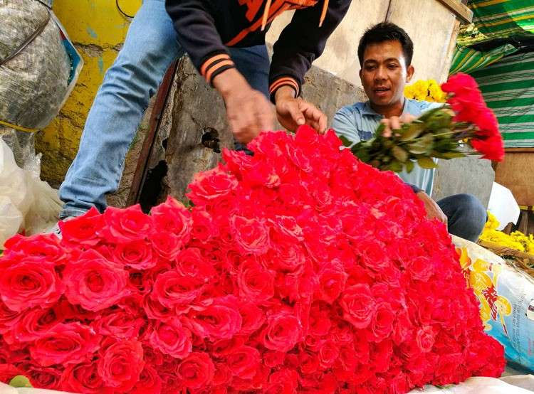 CEBU. A flower vendor arranges his display inside the Freedom Park in Carbon Public Market. Prices of flowers are expected to rise in the following days in time for Valentine's Day. (Arni Aclao)