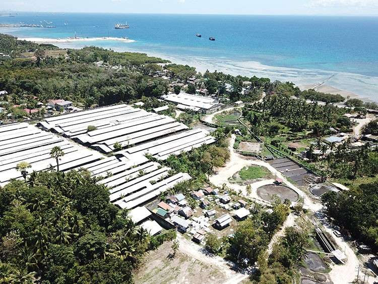 CEBU. A drone capture of the entire compound of the piggery farm of Multifarms Agro-Industrial Development Corp. in Barangay Sangat, San Fernando, Cebu show its waste treatment facilities (right side of picture) and the pipeline to the seawaters. (Allan Cuizon)