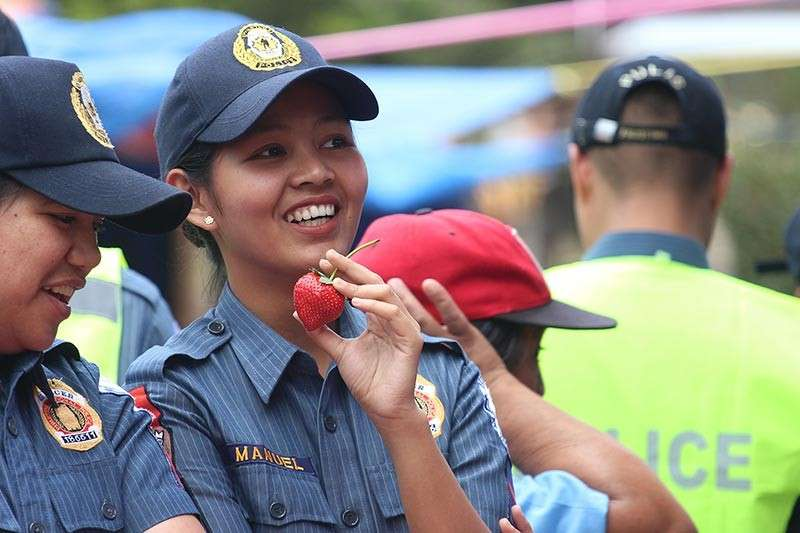 BENGUET. Police Officer 1 Charmine Manuel enjoys the newly harvested strawberry in La Trinidad. (Photo by Jean Nicole Cortes)