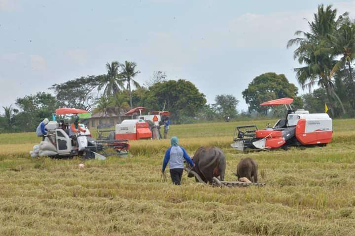 NEGROS. Farm mechanization demonstration during the Field Day and Harvest Festival in Bago City. (Contributed photo)