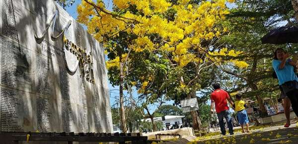 CAGAYAN DE ORO. The memorial landmark dedicated to the victims of Tropical Storm Sendong in Gaston Park, Cagayan de Oro City, is showered with fallen flowers of golden trumpet or chrysantha trees that are currently in season to display bright yellow colors. (Nef Luczon)