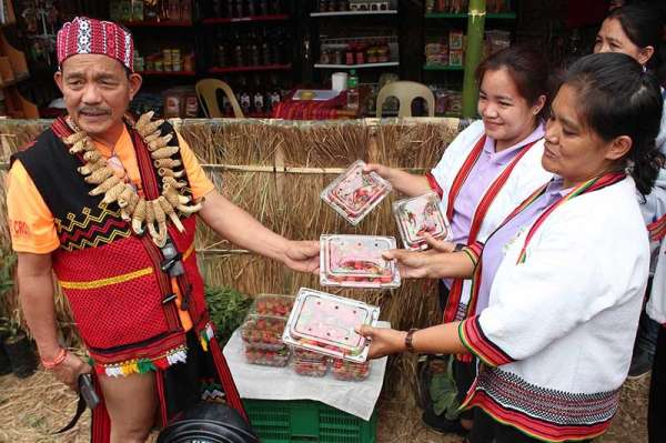 """DAVAO. Bauko Mayor Abraham Akilit with local strawberries at the agriculture, tourism and livelihood fair set up at the municipal oval in Poblacion as the town celebrates its 13th Begnas di Bauko themed """"Bauko; Home of Talents and Opportunities"""". (Photo by Jean Nicole Cortes)"""