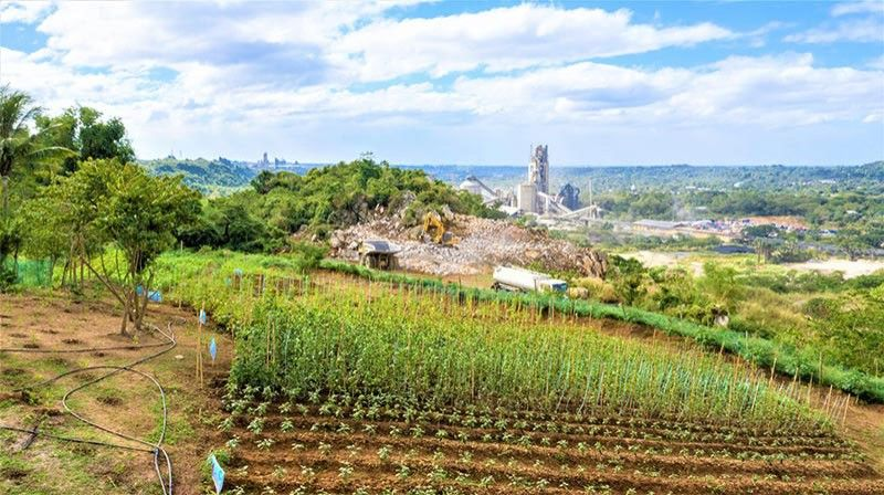 BULACAN. Republic Cement has established an agro-farm at a former quarry site in its Bulacan plant. (Contributed Photo)