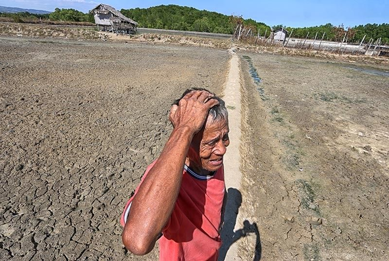 LIVELIHOOD GONE FOR NOW. Elias Silvano, 72, can only scratch his head in disbelief. He will not be able to raise tilapia and bangus in his two fishponds in Barangay Ocaña in Carcar City until the El Niño subsides. (SunStar photo / Alex Badayos)