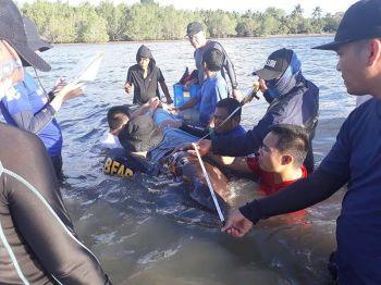 (Photo by Fatma Idris, Bureau of Fisheries and Aquatic Resources (BFAR)-Davao)