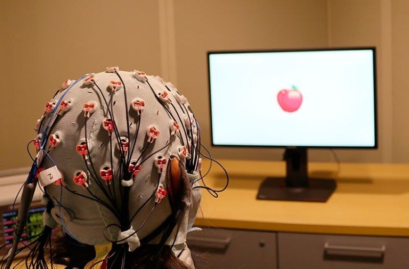 USA. This Friday, April 5, 2019 photo provided by Boston University shows a cap that administers electrical stimulation and monitors brain waves for a visual working memory test at one of the school's laboratories. (AP)