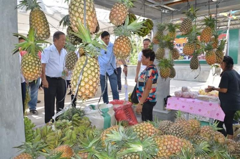 BACOLOD. Negros Occidental Governor Alfredo Marañon Jr. (left) checks on the agricultural products displayed and sold in one of the trade fairs at the ongoing 26th Panaad sa Negros Festival in Bacolod City. (Photo courtesy of Capitol PIO)