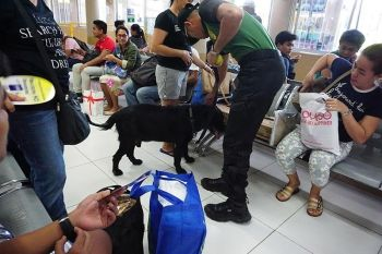 CLEAN AND ORDERLY. The Philippine Drug Enforcement Agency's K-9 units are deployed to the Cebu South Bus Terminal to ensure passenger safety.  (SunStar photo / Alex Badayos)
