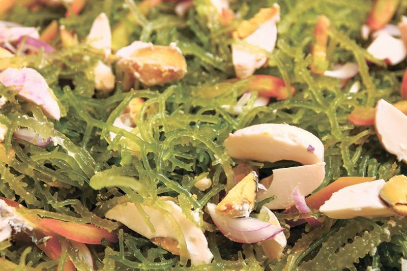 LOCAL DELICACY. Who says seaweeds are only good for exports? With more tourists visiting Cebu and eating in its restaurants, seaweed farmers ought to earn from the local consumption of fresh seaweed salad, an industry official says. (SunStar file)