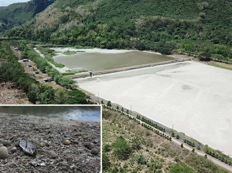 DEPLETED, DRY: The weir of Metropolitan Cebu Water District (MCWD) in Barangay Jaclupan, Talisay City is nearly depleted as rains have not come. (Inset) Dead fish and clams are found on the infiltration and sedimentation basins that have dried up. Story on 2. (Photos by Allan Cuizon)