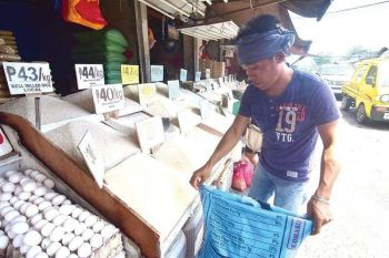 DAVAO. Neda-Davao Director Maria Lourdes Lim said the regulation of rice trading will address the problems such as rice production shortages in the region. (File Photo)