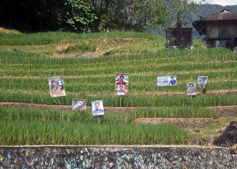 DESECRATION. Candidates in the province of Ifugao destroy the beauty of the rice terraces with the placement of their campaign materials in the rice fields. Despite the rules on the placement of campaign material on common posting areas only, many are still violating and the Comelec is awaited to take action. (Photo by Redjie Melvic Cawis)