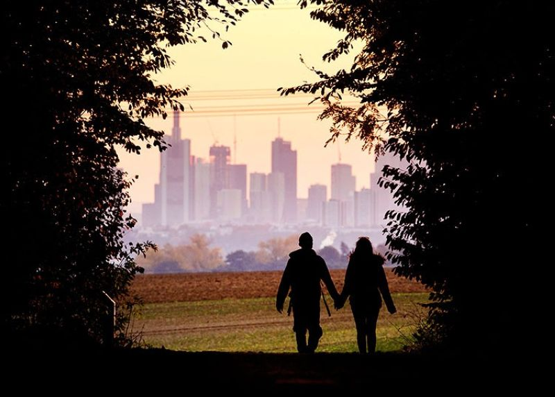 GERMANY. In this October 21, 2018, file photo, a couple walks through a forest with the Frankfurt skyline in background near Frankfurt, Germany. Development that led to loss of habitat, climate change, overfishing, pollution and invasive species is causing a biodiversity crisis, scientists say in a new United Nations science report released Monday, May 6, 2019. (AP)