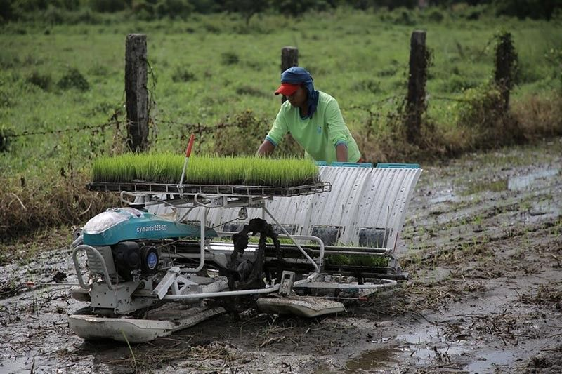 PAMPANGA. The use of a mechanical rice transplanter is demonstrated for the farmers of the City of San Fernando, as part of the Farmers' Week celebration of the city government on May 10, 2019 at Brgy. Del Carmen. – CSF-CIO Photo