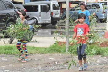 DAVAO. Gipangbitbit niining mga bataa ang mga sanga sa gagmay'ng kawayan nga ilang nahipos atol sa gipahigayong Brigada Eskwela sa tulunghaan sa Davao City National High School sa dalang F. Torres, dakbayan sa Davao. Ang Brigada Eskwela nagsugod niadtong adlaw'ng Lunes ug mahuman sa adlaw'ng Biyernes. (Mark Perandos)