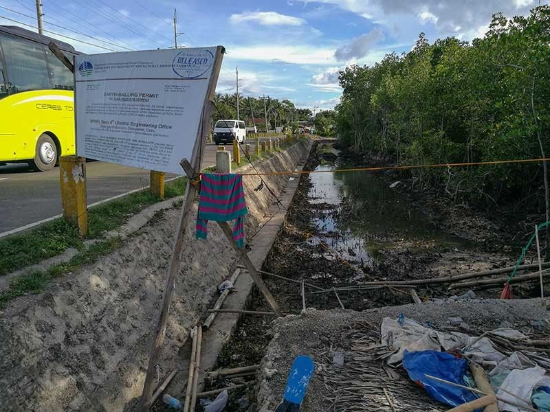 QUESTIONED MOVE. The Department of Environment and Natural Resources 7 granted an earth-balling permit for mangroves along a portion of the national road in Dumanjug for a road-widening project, construction/maintenance of flood-mitigation structures and construction of Tangil-Tapon seawall in Barangay Tapon. (SunStar Photo/Arni Aclao)