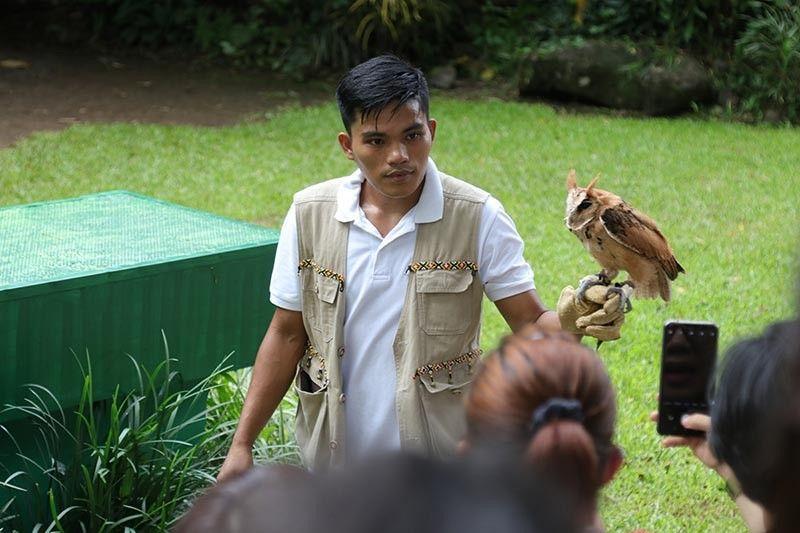 """EDUCATIONAL TOUR. Gipaila-ila niining usa ka personahe sa Malagos Garden Resort sa Mintal, siyudad sa Davao ang usa ka klase sa kuwago o """"owl"""" sa mga turista nga misuroy sa maong resort niadtong adlaw'ng Sabado, atol sa ilang interactive bird show. (Mark Perandos)"""
