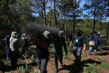 BAGUIO. In this January 2019 file photo, government workers confiscate construction materials inside the Pugius Communal Forest. La Trinidad Mayor Romeo Salda called on residents to help preserve the remaining  communal forest of the town. (Jean Nicole Cortes)